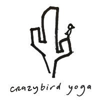 crazybird yoga