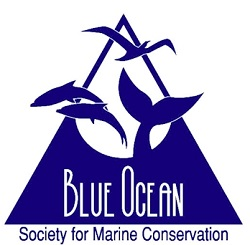 Blue Ocean Society for Marine Conservation Inc.