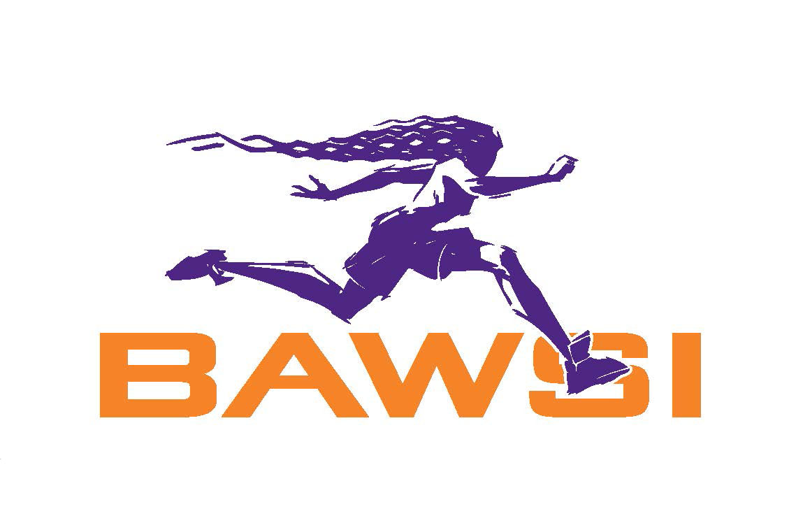 Bay Area Womens Sports Initiative Inc.