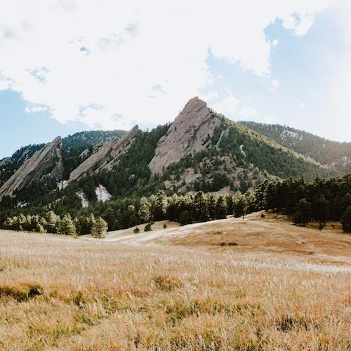 Boulder Beasts
